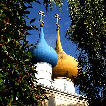 Orthodox by Perspective