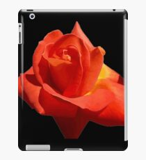 Beautiful Red Rose Photograph Vector iPad Case/Skin