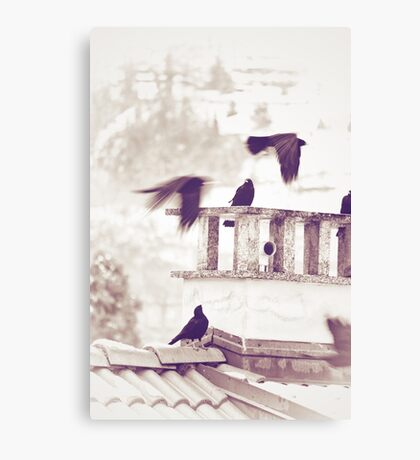 Crows in Winter Canvas Print