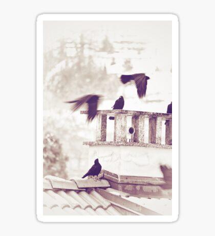 Crows in Winter Sticker