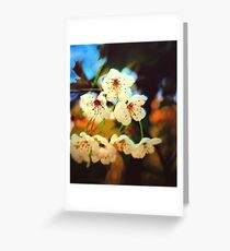 Canvas Blossoms... Greeting Card