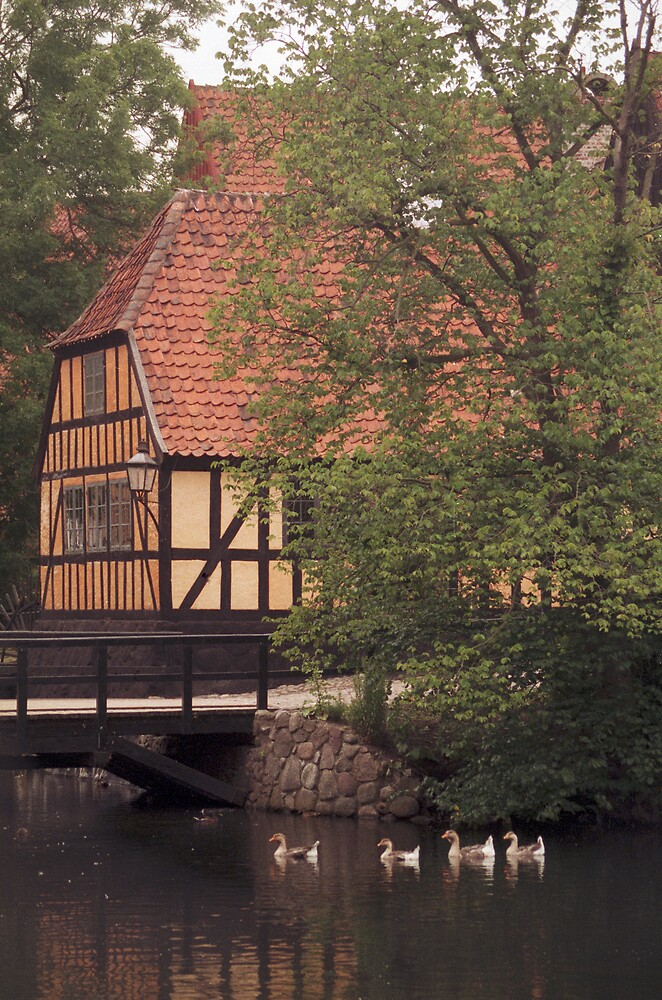 Danish idyll by jensNP