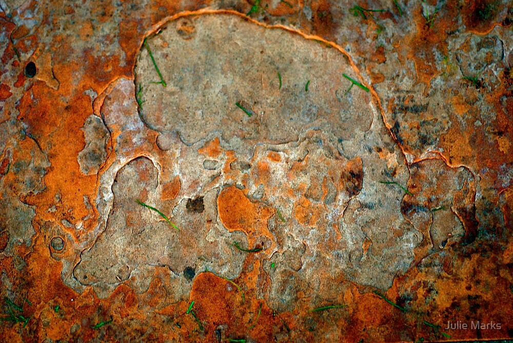 Rusted Bark Abstract by Julie Marks