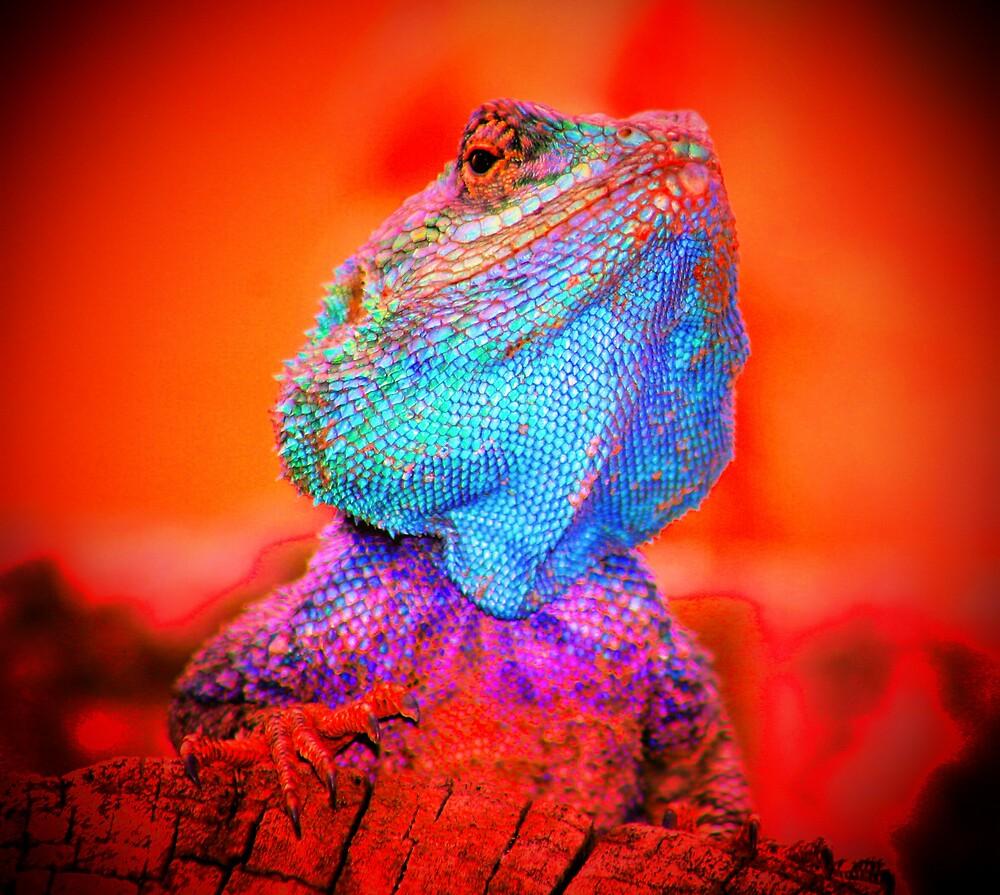 Psycho reptile by CarolineKruger