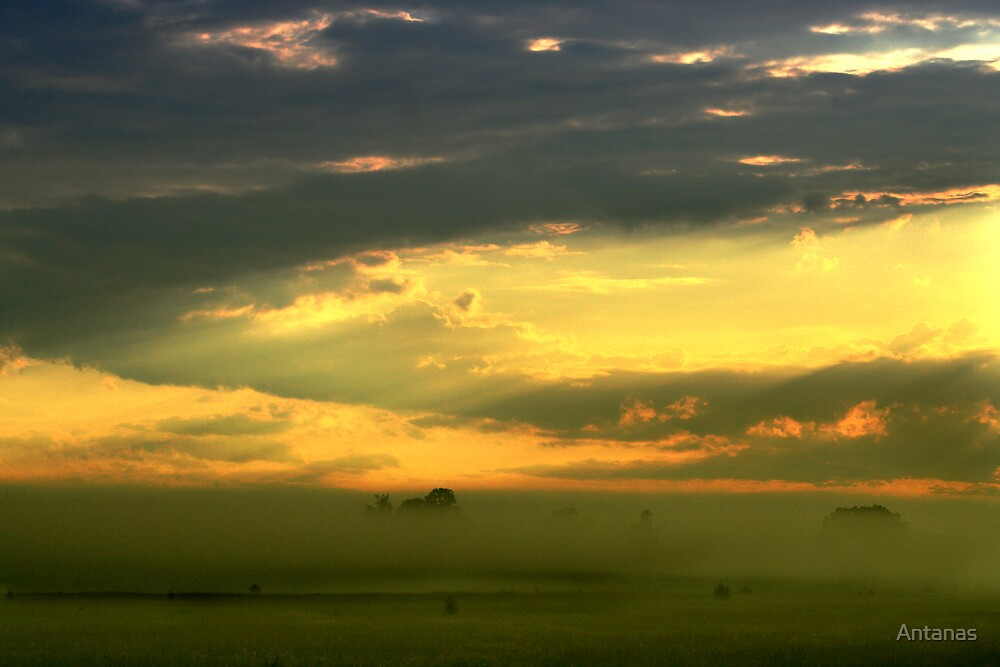 Foggy Sunrise by Antanas