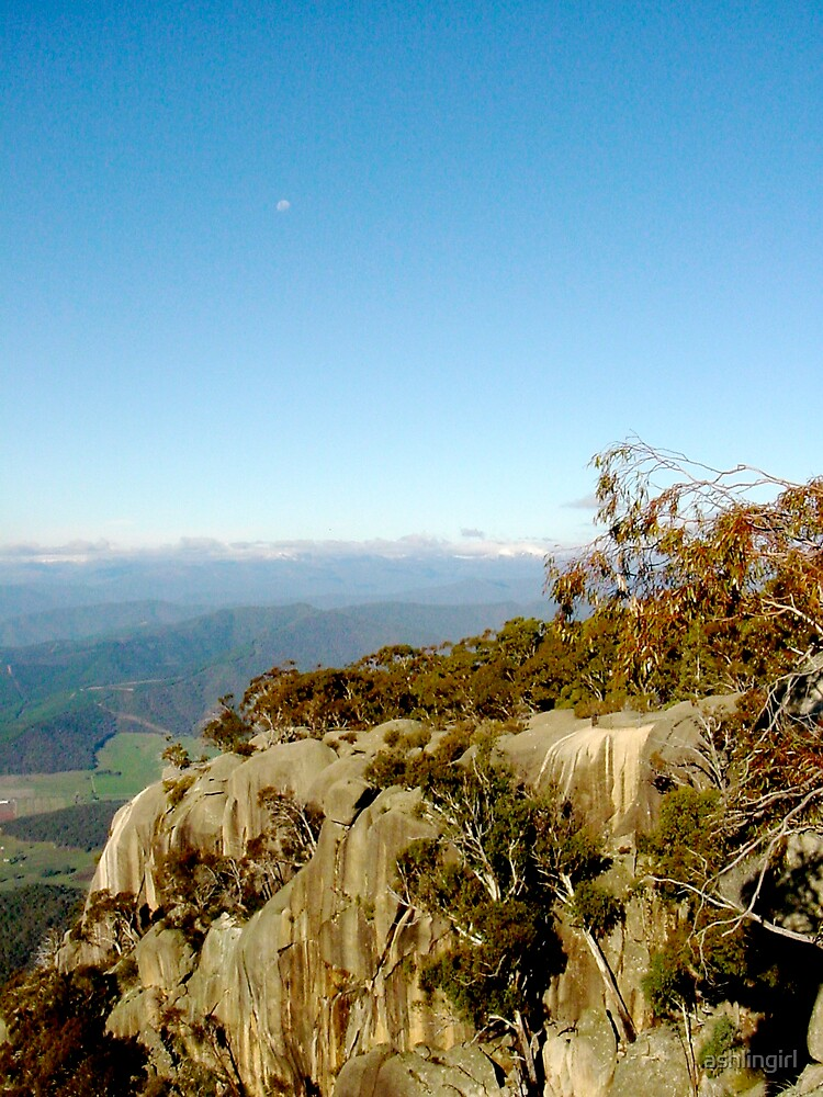 Clear morning, Mount Buffalo by Amanda Hayes