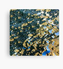 reflection abstract Canvas Print