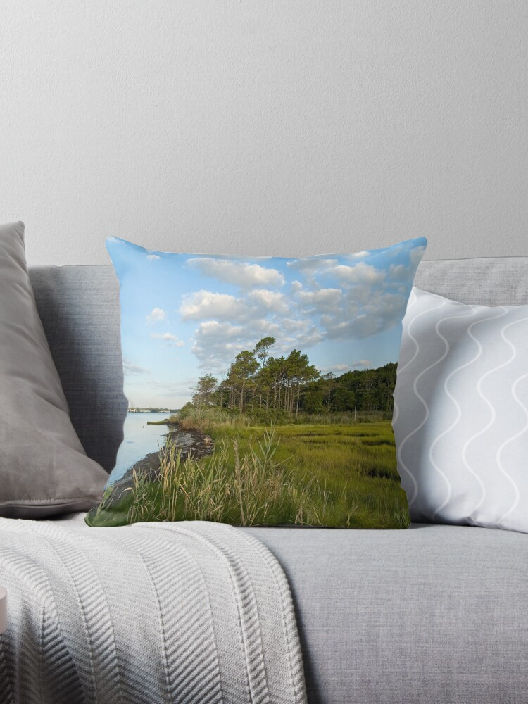 Wetlands by andykazie