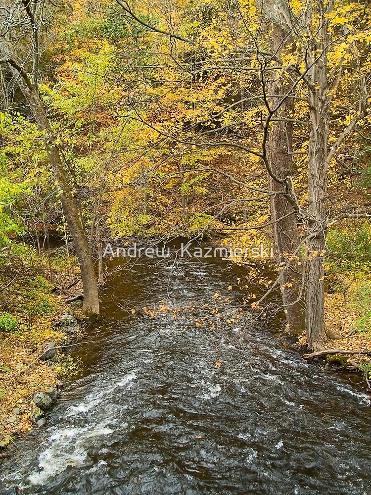 Autumn Stream View by andykazie