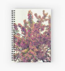 Cherry Blossom Tree in Flower  Spiral Notebook