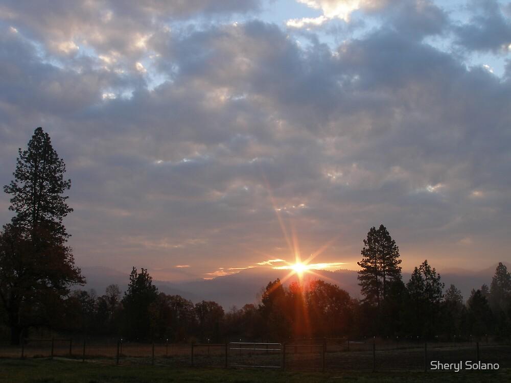 God's Morning Grace by Sheryl Solano