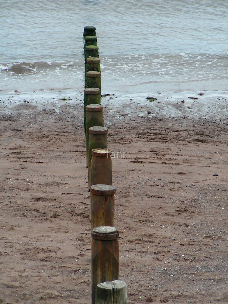 posts into the sea by Iani