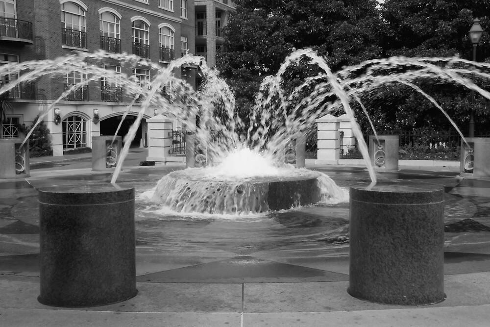 Fountain In Motion by RipleyDigital