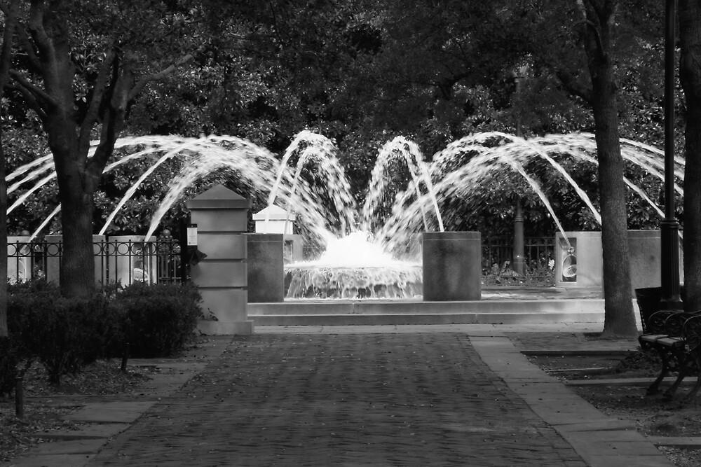Fountain in Motion II by RipleyDigital