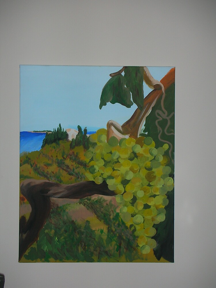 Vineyard by Alicia Swaim