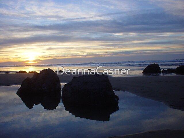 winter sunset by DeannaCasner