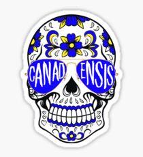 Camp Canadensis Skull Sticker