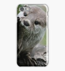 Otter Dreams iPhone Case/Skin
