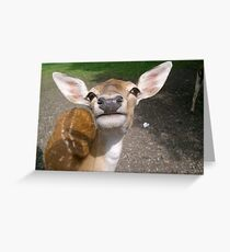 I AM a Big Girl! Greeting Card