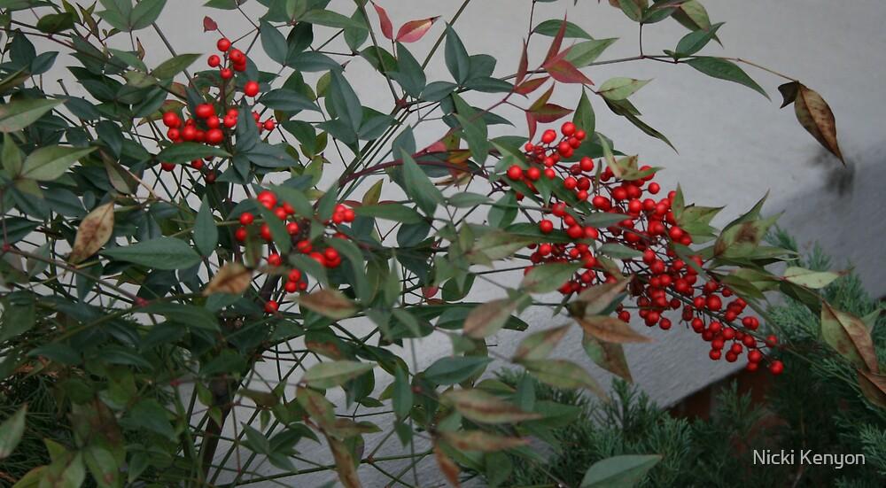 Berries by Nicki Kenyon
