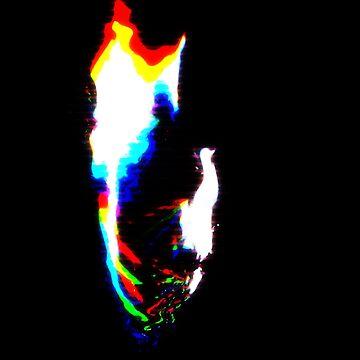 Digital Flame by llydisblur
