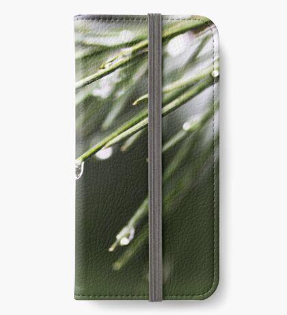 Regen und Pinien iPhone Flip-Case