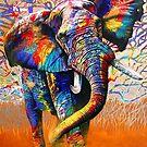 Afrikanische Farben von Graeme  Stevenson