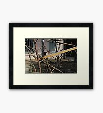 abandoned candy factory 7 Framed Print