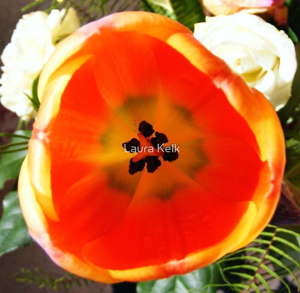 Inside the Tulip by Laura Kelk