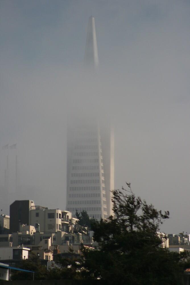 San Francisco by Ashley Thomas
