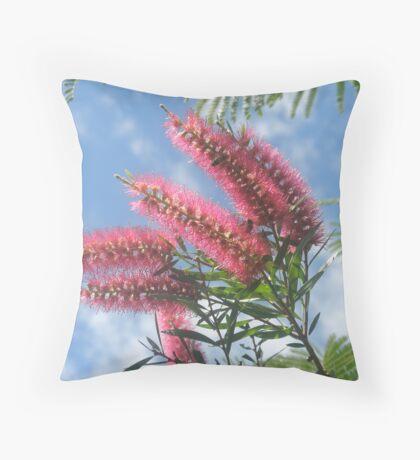Australian Sky Throw Pillow