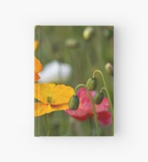Poppies 1 Hardcover Journal