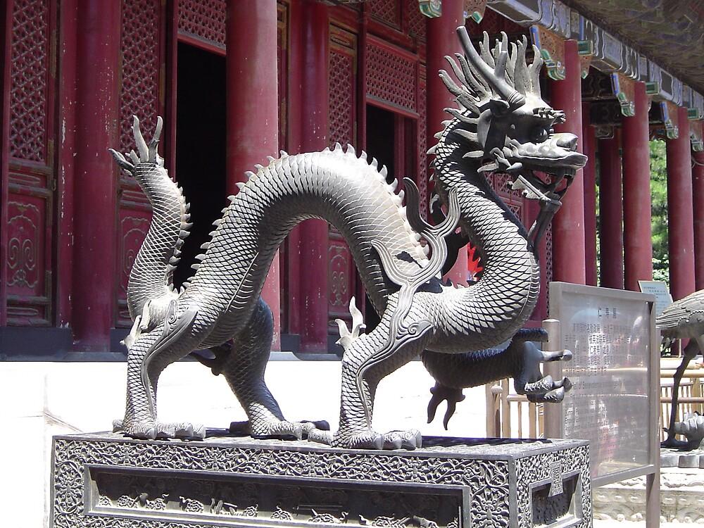 beijing dragon by chadg