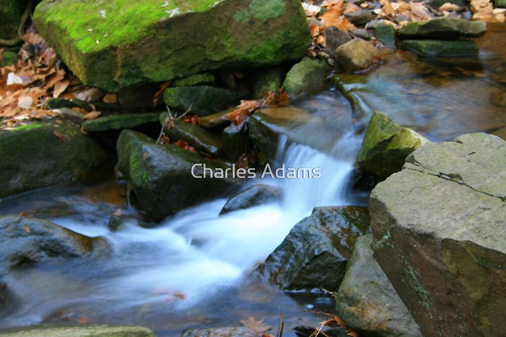 Mini Falls by Charles Adams