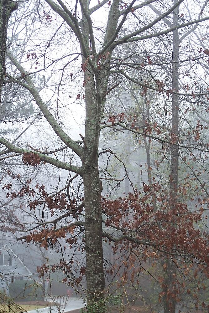 Winter Trees II by islandpainter