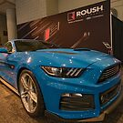 Roush Stang by barkeypf