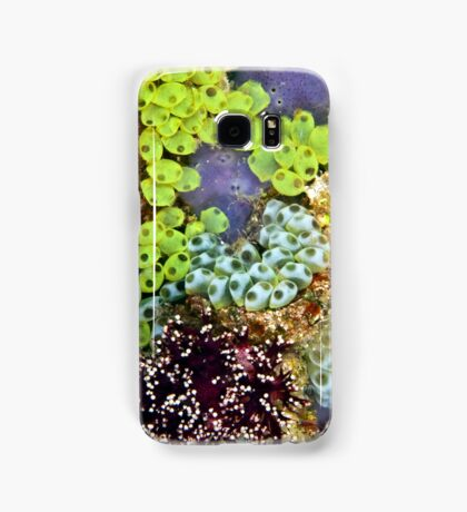 Potpourri Samsung Galaxy Case/Skin