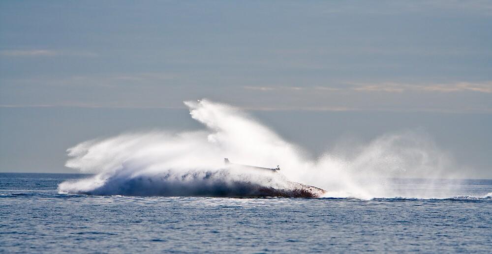 Splash by dpearce