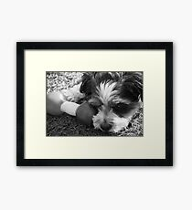 Lonely.... Framed Print