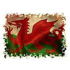 Wales by CardZone By Ian Jeffrey
