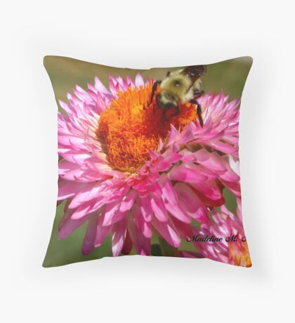 STRAWFLOWER DINER Throw Pillow