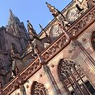 strasbourg cathedral of notre dame - 2 by srphotos