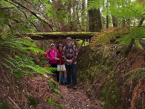 Bird River track to Kelly's Basin, Strahan - with lovely friends to walk & have fun with by gaylene