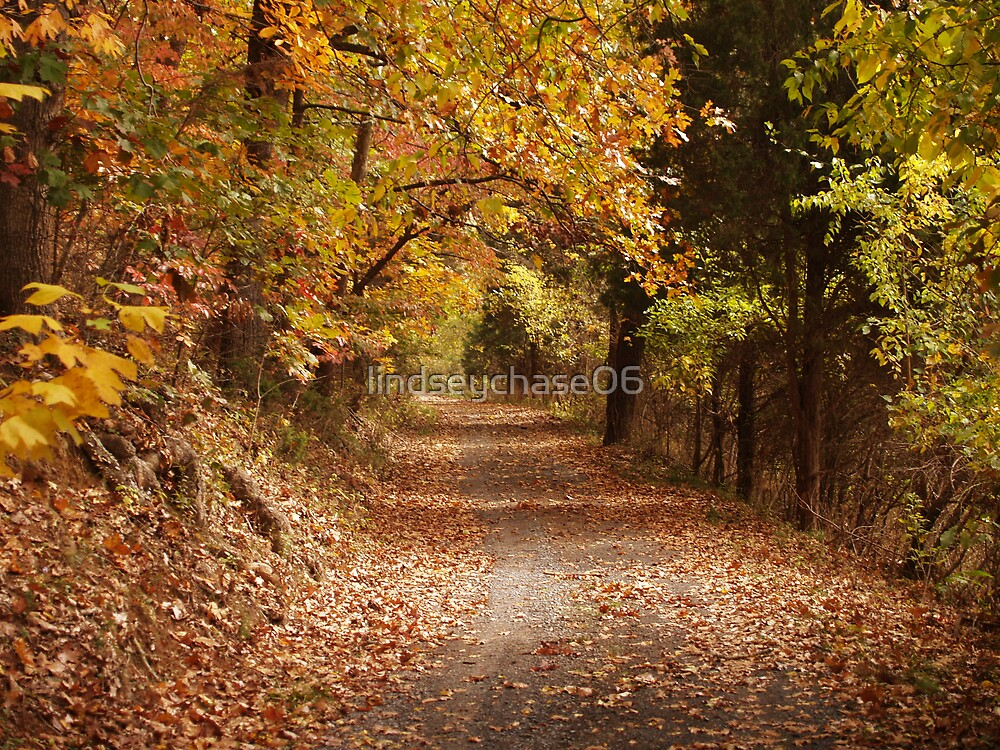 Fall Road by lindseychase06