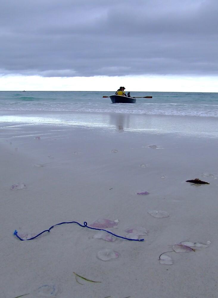 Blue Rope & Jellyfish by Samara  Lee