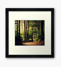 Woods Are Calling Framed Print