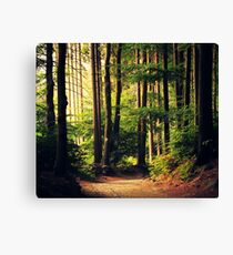 Woods appellent Impression sur toile
