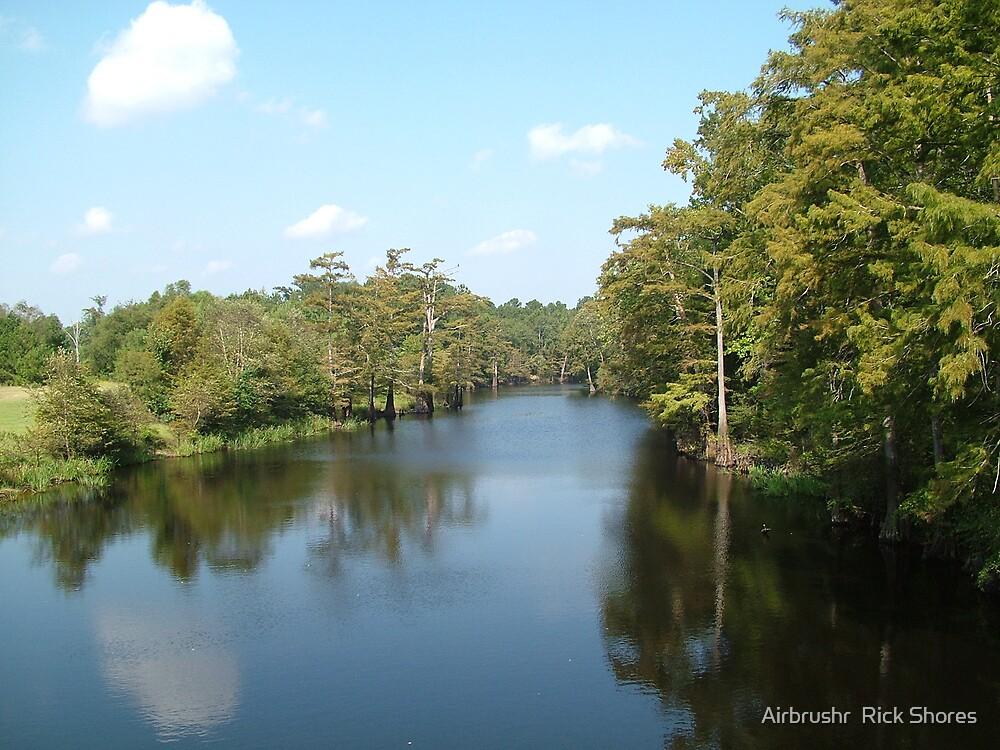 photo louisiana bayou by Airbrushr  Rick Shores