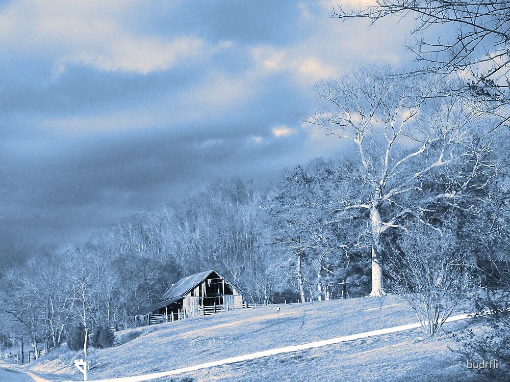 on a hillside 2 by budrfli