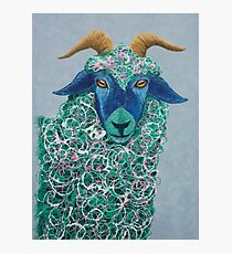 Goat in a Coat Photographic Print